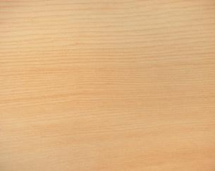 イチイの木目の写真素材 [FYI03981257]
