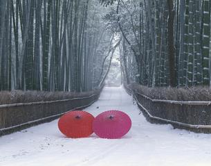 雪の竹林と蛇の目傘 嵯峨野2月の写真素材 [FYI03981496]