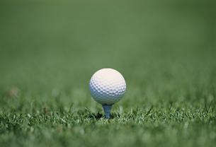 ティーアップ ゴルフの写真素材 [FYI03981553]