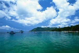 タオ島の写真素材 [FYI03981715]