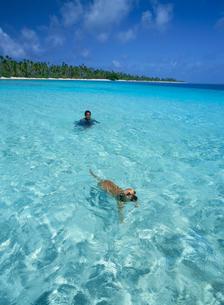 泳ぐ犬と人の写真素材 [FYI03981840]