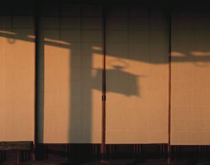 障子に映る吊り燈籠の影の写真素材 [FYI03983239]