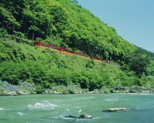 春の保津川とトロッコ列車の写真素材 [FYI03983296]