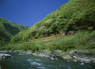嵯峨野観光鉄道トロッコと桜の写真素材 [FYI03983401]