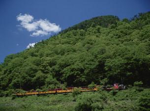 嵯峨野観光鉄道トロッコの写真素材 [FYI03983420]