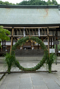 今宮神社の茅野輪の写真素材 [FYI03983674]