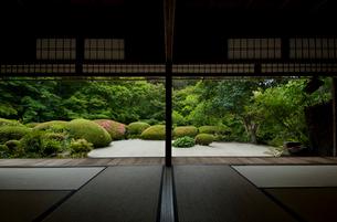 詩仙堂の庭園の写真素材 [FYI03983715]