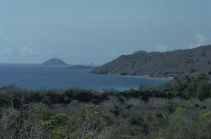 コモド島の風景 10月 インドネシアの写真素材 [FYI03984868]