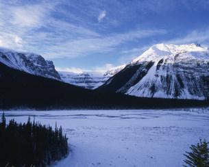 氷河 カナディアンロッキーの写真素材 [FYI03984980]