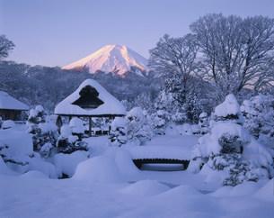 富士山の朝焼けと雪の庭園の写真素材 [FYI03985019]