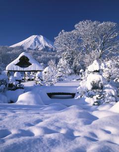 雪の庭園と富士山 忍野八海の写真素材 [FYI03985032]