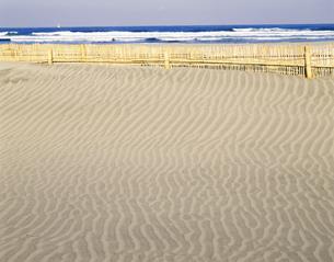 砂丘の風紋 波崎砂丘の写真素材 [FYI03985112]