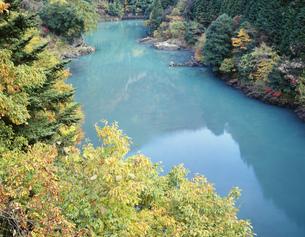 黄葉と奥多摩峡谷の写真素材 [FYI03985114]