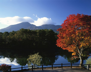 五色沼の紅葉と磐梯山の写真素材 [FYI03985120]