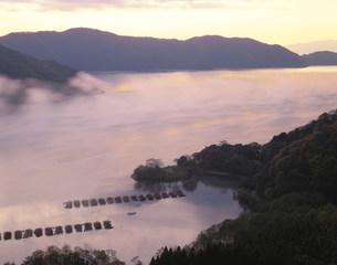 琵琶湖の朝もやの写真素材 [FYI03985139]