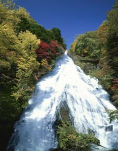 湯滝と紅葉の写真素材 [FYI03985140]