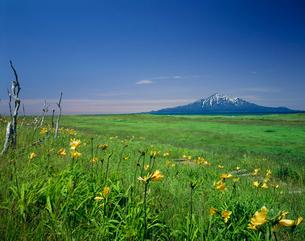 サロベツ原野と利尻富士の写真素材 [FYI03985153]