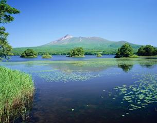大沼公園と駒ヶ岳の写真素材 [FYI03985157]