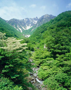 谷川岳マチガ沢の写真素材 [FYI03985162]