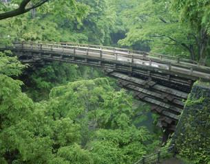 猿橋と桂川渓谷の写真素材 [FYI03985168]