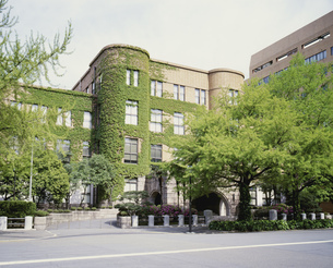 新緑の横浜地方裁判所の写真素材 [FYI03985174]