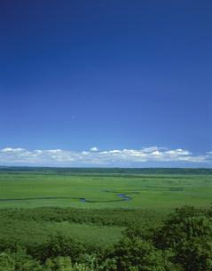 釧路湿原の写真素材 [FYI03985175]
