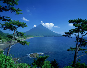 開聞岳と松の写真素材 [FYI03985176]