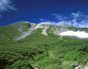 雪渓と乗鞍岳  7月   長野県の写真素材 [FYI03985188]