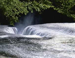 新緑と光る吹割の滝    6月の写真素材 [FYI03985203]