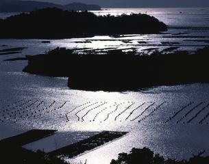 光る英虞湾の水面  9月  三重県の写真素材 [FYI03985204]
