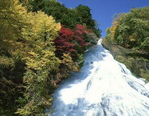 湯滝と紅葉の写真素材 [FYI03985205]