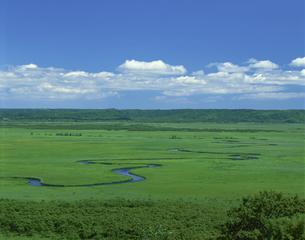 蛇行する川 釧路湿原 7月の写真素材 [FYI03985207]