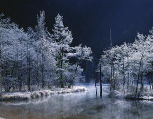朝もやの霧氷の田代池 上高地の写真素材 [FYI03985218]