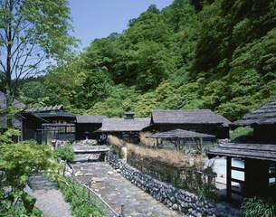 新緑の鶴の湯温泉の写真素材 [FYI03985226]