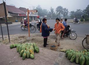 道端でパパイヤを売る農民の写真素材 [FYI03985774]