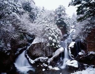 冬の竜頭ノ滝の写真素材 [FYI03986160]