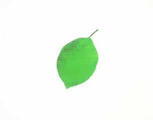 CG 木の葉形のイラスト素材 [FYI03986285]