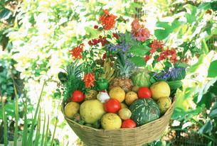 果物の写真素材 [FYI03986834]