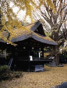 玉敷神社 神楽殿の写真素材 [FYI03987615]
