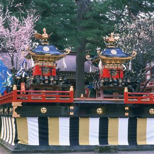 天津神社春季例大祭の写真素材 [FYI03987660]