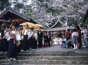 天宮神社例大祭の写真素材 [FYI03987907]