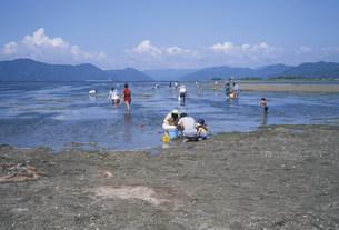 琵琶湖渇水と潮干狩の写真素材 [FYI03988186]