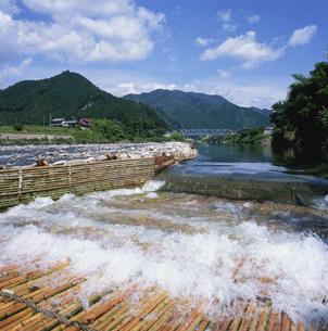 刈安ヤナ 長良川の写真素材 [FYI03988648]