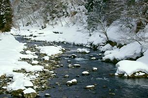 雪の長良川の写真素材 [FYI03988787]