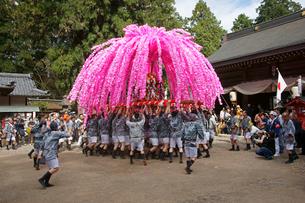 美濃祭 花みこし 八幡神社の写真素材 [FYI03988837]
