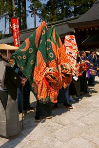 水無神社例大祭  獅子舞の写真素材 [FYI03988851]