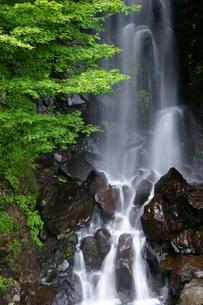 駒ヶ滝の写真素材 [FYI03988936]
