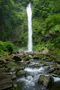 阿弥陀ヶ滝の写真素材 [FYI03988938]