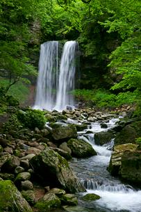 夫婦滝の写真素材 [FYI03988943]