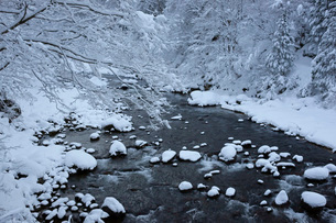 雪の長良川の写真素材 [FYI03989167]